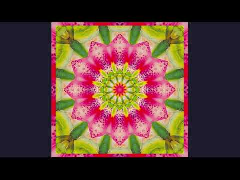 "Judy Satori Transmission  - ""Nourish"""