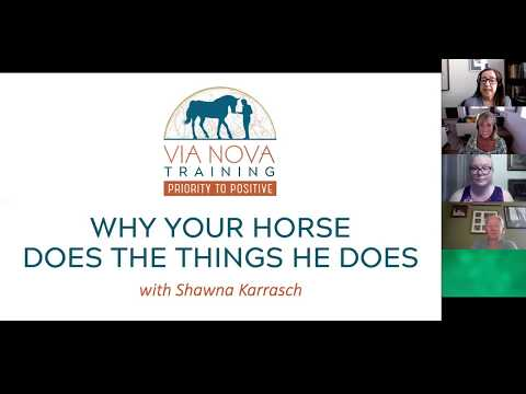 Why Your Horse Does the Things He Does with Shawna Karrasch