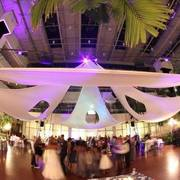 Amadoll Events