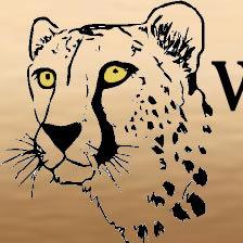 wild odyssey safaris
