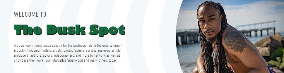 The Dusk Spot Logo
