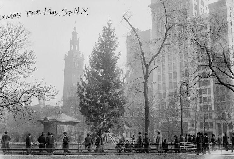 ამერიკული ახალი წელი, საახალწლო ფოტოები, საახალწლო ბაზრობა, ამერიკული ცხოვრება, ნიუ იორკი, Qwelly, ფოტოგრაფია