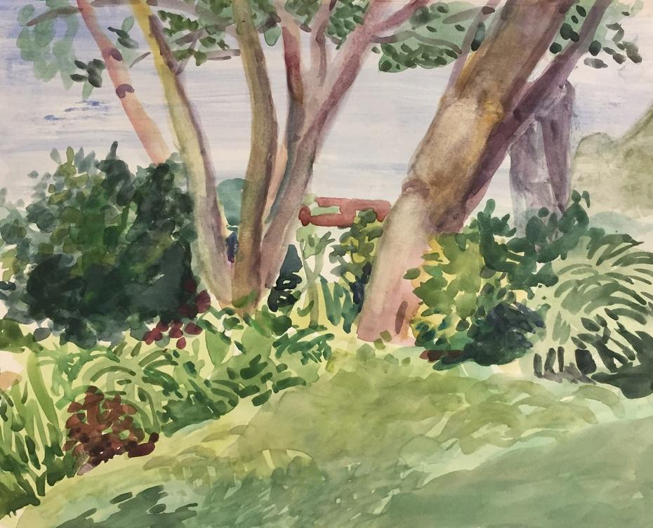 Spring Lake Michigan (2020)