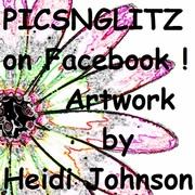 Heidi Johnson Picsnglitz