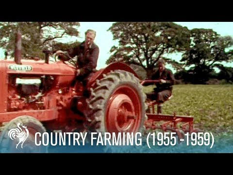 Country Farming: Innovations of the Modern Tractor (1955-1959) | British Pathé