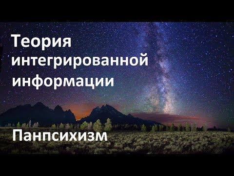 Разумная Вселенная  | Теория интегрированной информации | Панпсихизм