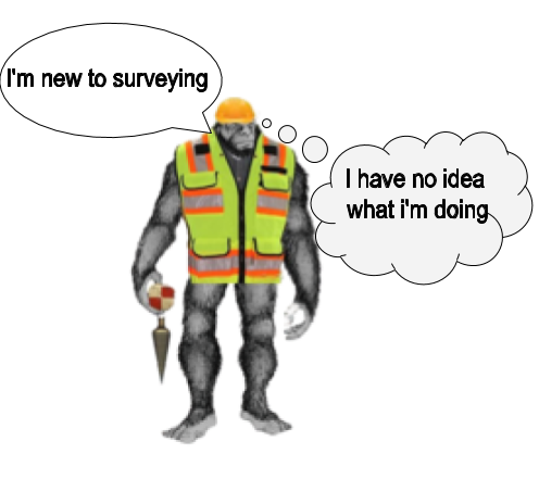 I need a mentor in land surveying
