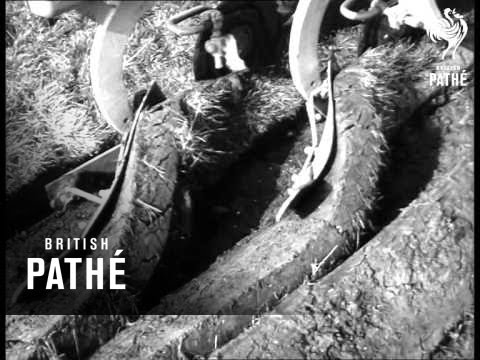 World Ploughing Competition (1962)