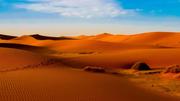 desert safari scene