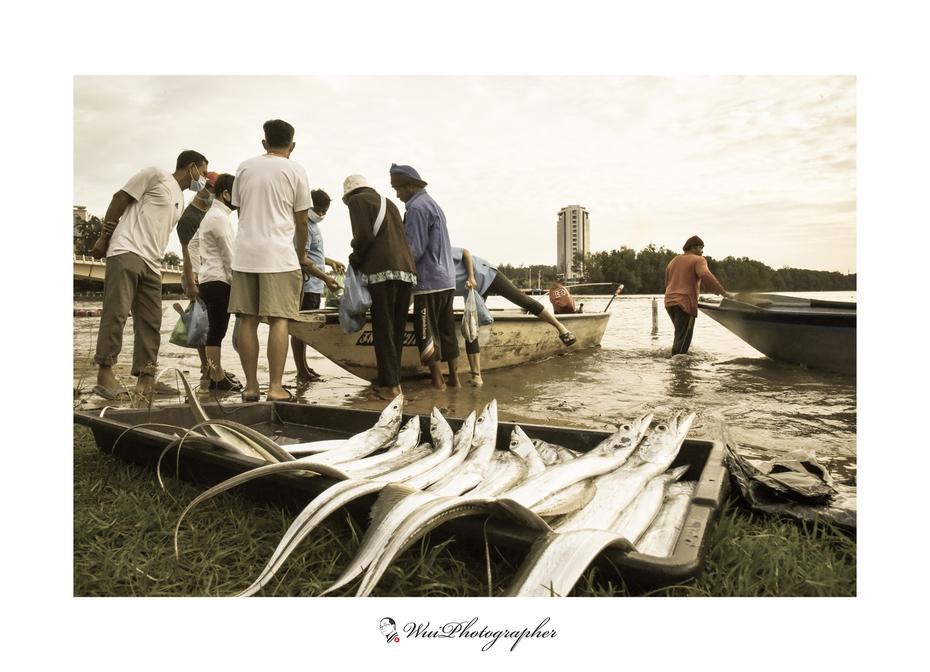 沙巴人文關懷攝影家劉富威作品:亞庇里卡士河漁獲