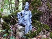 Namo Quan Shi Yin - Bodhisatva of Compassion