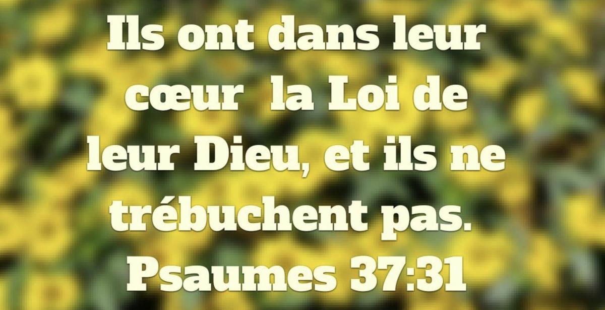 « La loi de son Dieu est dans son cœur ; Ses pas ne chancellent point. » Psaumes 37:31
