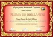 HUGO MARIO BERTOLDI ILLESCA Diploma PLUMA DE BRILLANTES sitio OME
