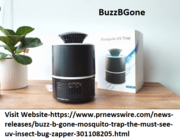 Buzz B Gone Insect Zapper