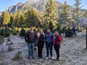 Christmas 2019 - Tree hunting