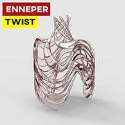 Enneper Twist
