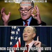 Talmudic Commie,A Mentally ill Gay Jew Schumer has a dual citizenship