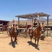 Horse Sanctuary Rosarito, Mexico