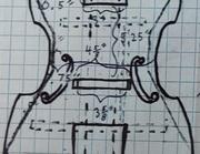 CelloGamba Bracing Plan