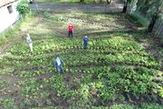 A Permaculture School Farm, near Guadalajara