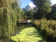 Barcombe River Ouse circular 28.08.20