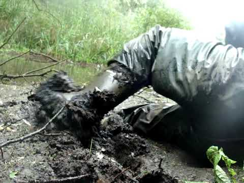 A new muddy spot