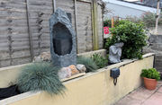 My lockdown garden