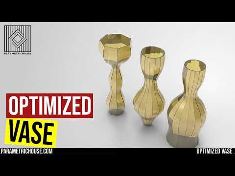 Optimized Vase