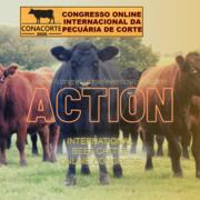 Online International Congress on Beef Cattle