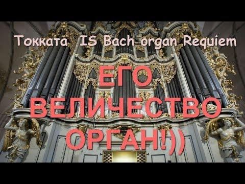 Потрясающая музыка!! И С  Бах. Орган. Токката/  I.S. Bach Organ Requiem