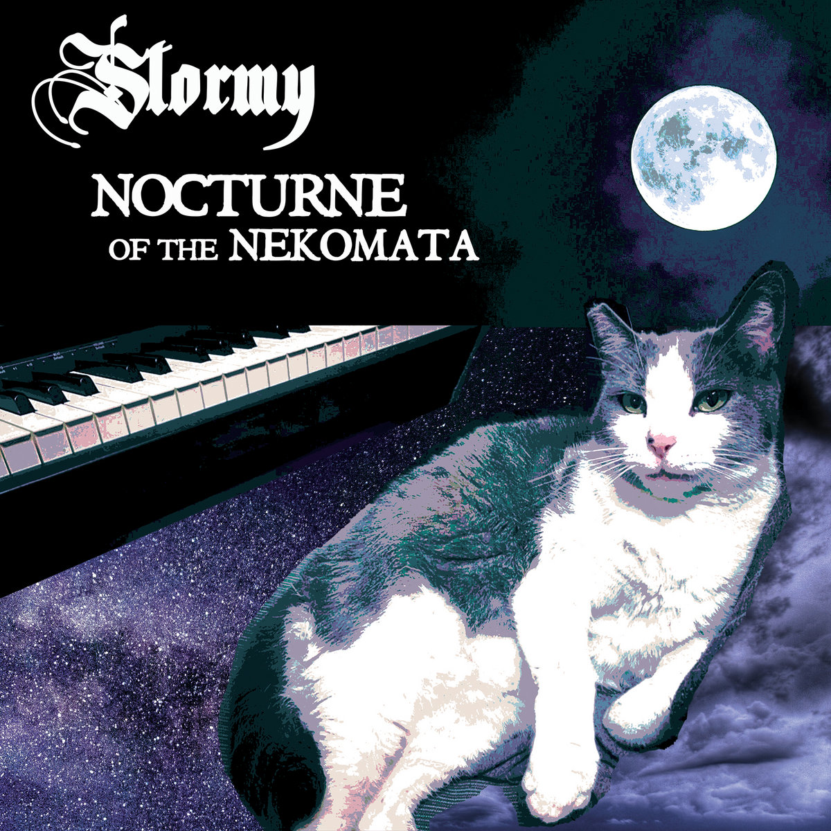 Stormy (the cat),  'Nocturne of the Nekomata'