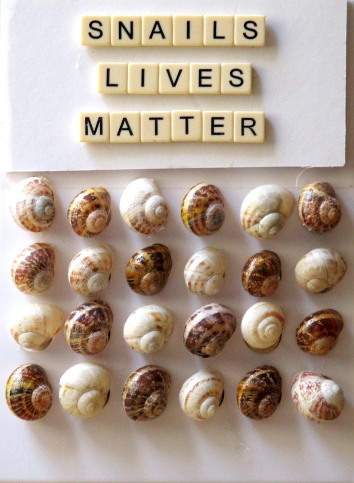 Snails' Lives Matter