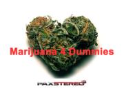 Marijuana 4 Dummies