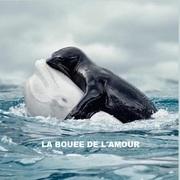 """""""La bouée de l'amour"""""""