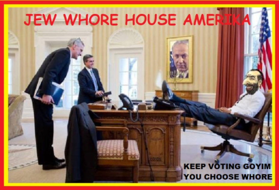 Jew Run Whore House of America - Keep Voting Goyim