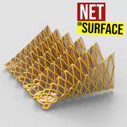 Net on Surface