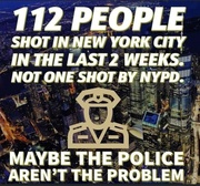 Maybe the police aren't the problem