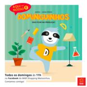 """Preocupação ambiental sempre presente em mais um mês criativo, didático, e divertido nos """"Dominguinhos"""" online"""