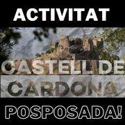 (POSPOSADA!!!) - EXCURSIÓ 1 DIA : CARDONA I EL SEU CASTELL!! - VISITES GUIADES