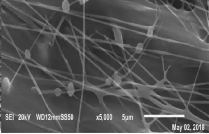 Nanofibrous Biomembrane for Wastewater Treatment