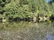 Sparkling elk river