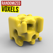 Randomized Voxels