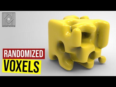 Randomized Voxels