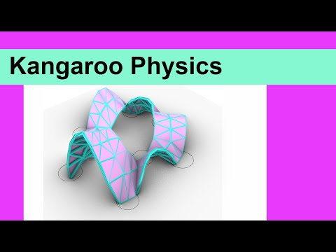 Kangaroo Physics