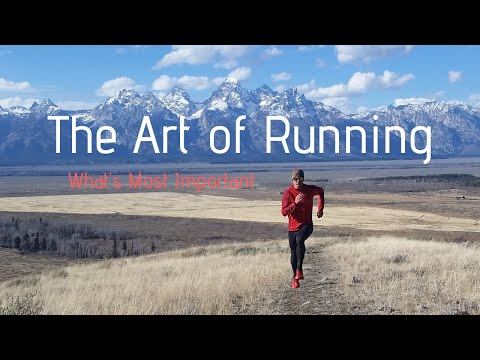 The Art of Running: What's Most Important (Bears + Grand Teton Nat Park)