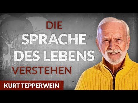 Der Weg zur inneren Freiheit: Wie die Schule des Lebens funktioniert - Kurt Tepperwein | Tobias Beck