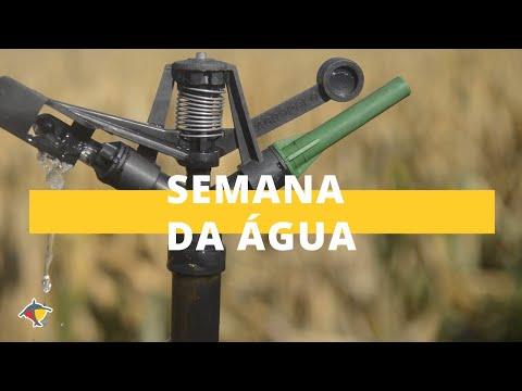Ações para melhorar o uso da água nas propriedades rurais I Programa Terra Sul