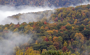 Color in the Mountains of Wwestern North Carolina