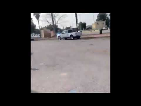 Crazy white woman harasses black man and throws dog at him