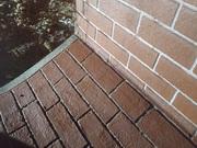 Wallcrete by Pedratek IMG_20200930_1902044